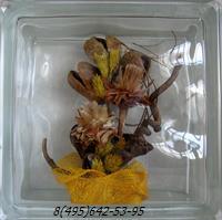 Стеклоблок Vitrablok декоративный бесцветный с наполнением внутри растения рт_001 д