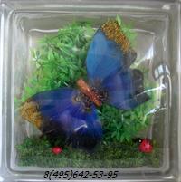 Стеклоблок Vitrablok декоративный бесцветный с наполнением внутри бабочки рт_016 л