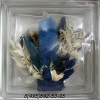 Стеклоблок Vitrablok декоративный бесцветный с наполнением внутри растения рт_001 м