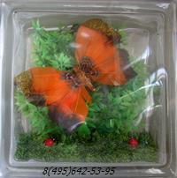 Стеклоблок Vitrablok декоративный бесцветный с наполнением внутри бабочки рт_016 з