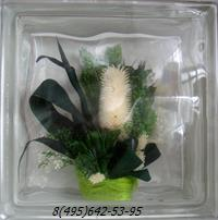 Стеклоблок Vitrablok декоративный бесцветный с наполнением внутри растения рт_001 з